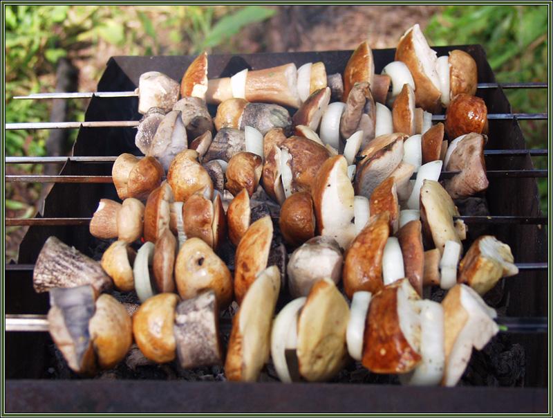Шашлык из сушёных грибов