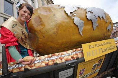 Хайхельхаймский всемирный картофель