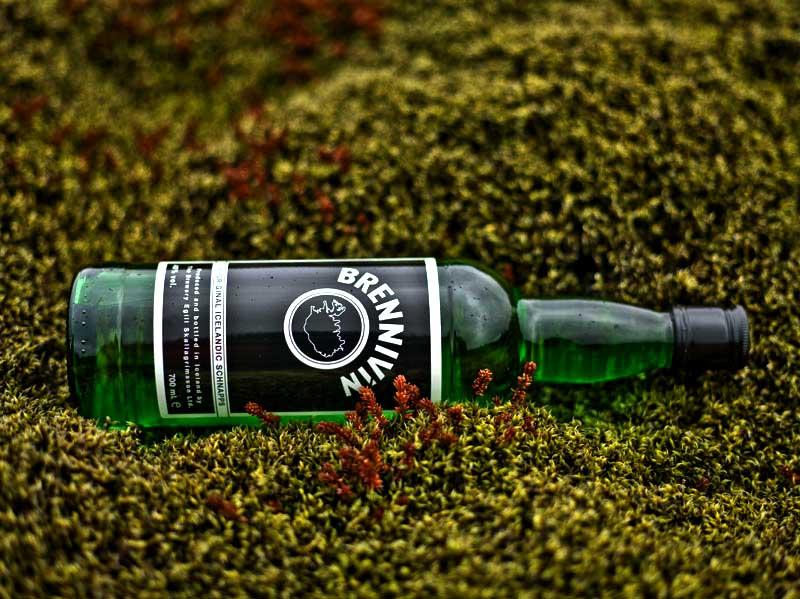 Исландская водка «Бреннивин»