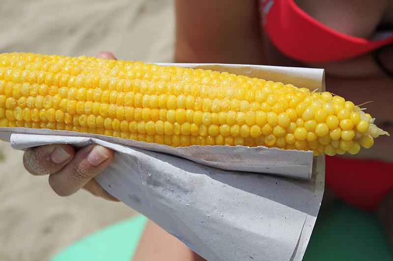 1-mesto-Zareviza-kukuruza