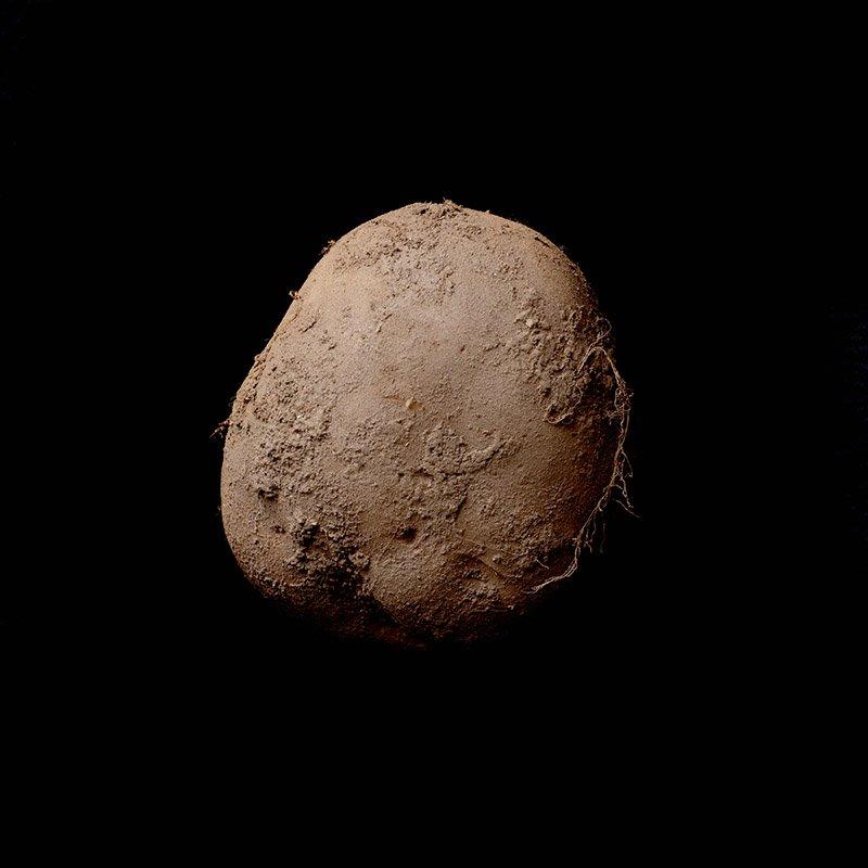 Немытый картофель Кевина Абоша
